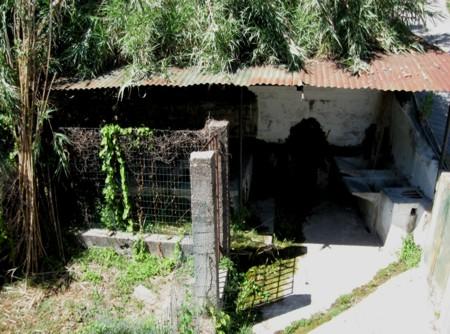 Antica fontana di Clavi